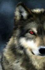 Creepypasta X Wolf!Child!Reader by ArtyWolfDeer