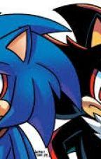 Sonic Ve Shadow by SoniCCFFan