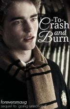 To Crash and Burn - Sequel to 'Going Unnoticed' by foreversmaug