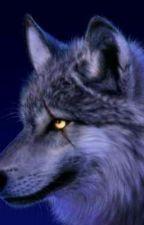 Wolf Spirit by TrexMichelle