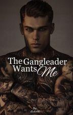 Gangleader wants Me by AceDino