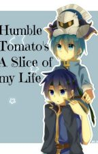 A Slice of my Life ~ Ask HumbleTomato by HumbleTomato