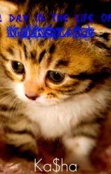 A Day In The Life Of Milkshake (XxSkater2Girl16xX One-Shot Contest. ASR) by kasha0heart