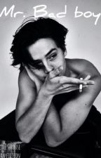 Mr. Bad Boy (a Cole Sprouse Fanfic) by manda_bear