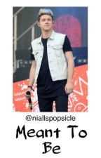 Meant To Be (A Niall Horan Fanfic) by niallspopsicle
