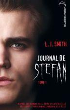 Journal de Stefan tome 1 by ilonalaplusbelle