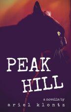 Peak Hill by arielklontz