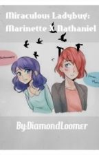 Miraculous LadyBug: Marinette X Nathaniel by DiamondLoomer