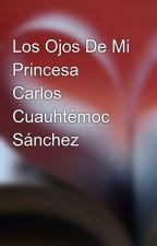 Los Ojos De Mi Princesa Carlos Cuauhtémoc Sánchez by gaby9815