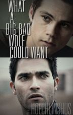 What a Big Bad wolf could want. - Sterek by hoechlinshus