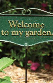 My Garden by jrzygrl229