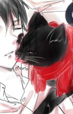 Levi x Feline!Reader by Katniss_360