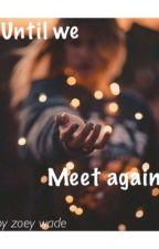 Until We Meet Again by zoeywade