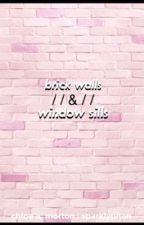 brick walls & window sills ➴ phan au by sparkl-i