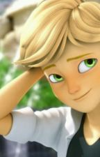 Nunca imagine conocerte                        (Chat Noir/Adrien y tu) by RainWhite_Whiteker