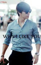 WHY I LIKE YOU by Minouri