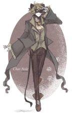 mi pequeño gato - Chat noir y tu by EvaFerNuezEspindola