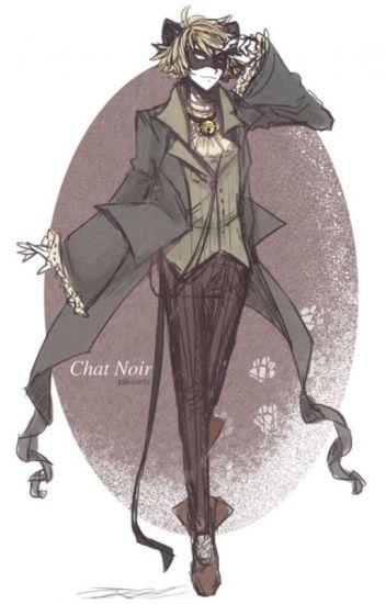 mi pequeño gato - Chat noir y tu