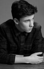Mensagens- Shawn Mendes by fck_luke