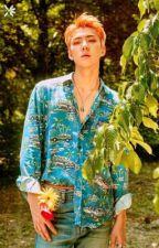 seoul fashion week; sehun  by kyomo-