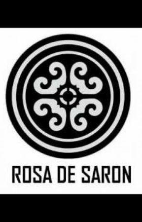 Significados das Músicas da Banda Rosa de Saron by For_ever1