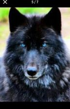 Immortal werewolf guardian (Werewolf Fanfic) by Deadlydragon2020