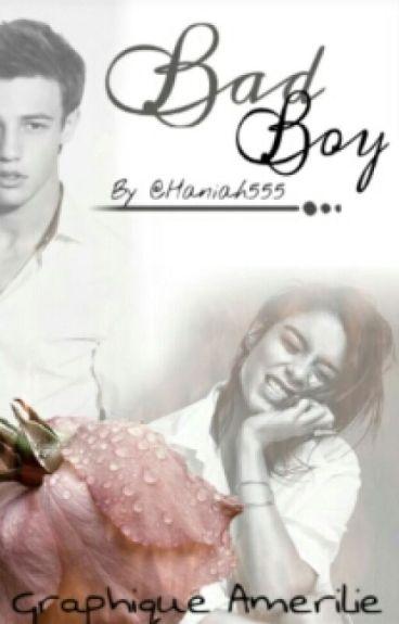 Bad Boy [ Terminé] (En Correction)