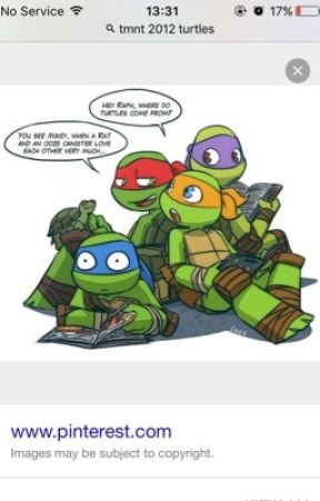 TMNT Fanfic Ideas - Page One - Wattpad