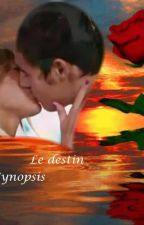 Le Destin *Finie* by xHeartLeonetta