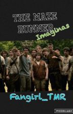 THE MAZE RUNNER imaginas !! by fangirl_TMR