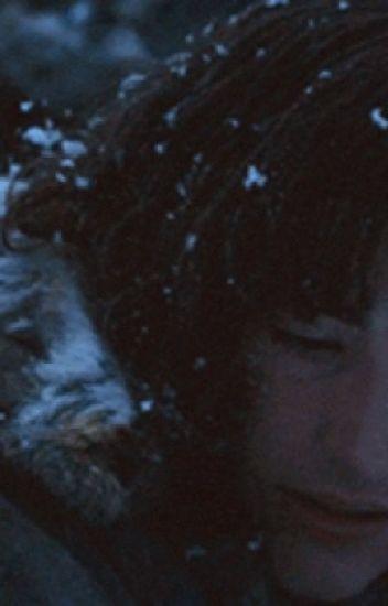 Summer child~Brandon Stark x Reader