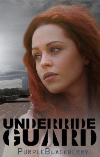Underride Guard