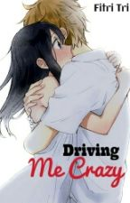 Driving Me Crazy by Fitri-Tri
