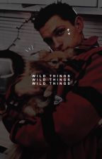 WILD THINGS.  (  writing tips  ) by -celestials