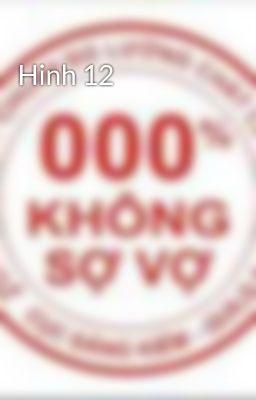 Hinh 12