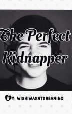 The Perfect Kidnapper - PrestonPlayz / TBNRfrags Fanfiction [COMPLETED] by wishiwasntdreaming