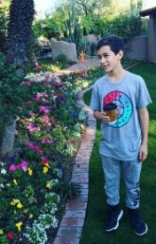 Brandon by OfficBrandonRowland