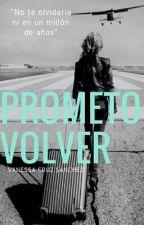 Prometo Volver by VanessaCruzSanchez