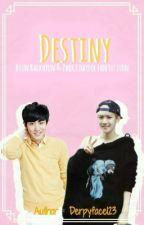 Destiny (Boy Version) by derpyface123