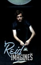 Reid Imagines by seahearse