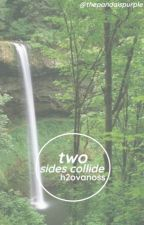 When Two Sides Collide ♡ H20Vanoss  | On Hold by thepandaispurple