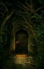 The secret door by radhakapse