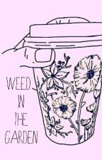 Weed in the Garden by daisy_shadows
