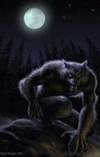 في ظلال القمر by vallyrose2