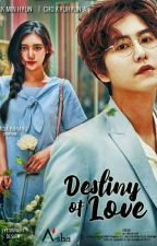 Destiny of Love by almidarahayu