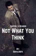 Castiel x Reader: Not What You Think by Sofaloofa