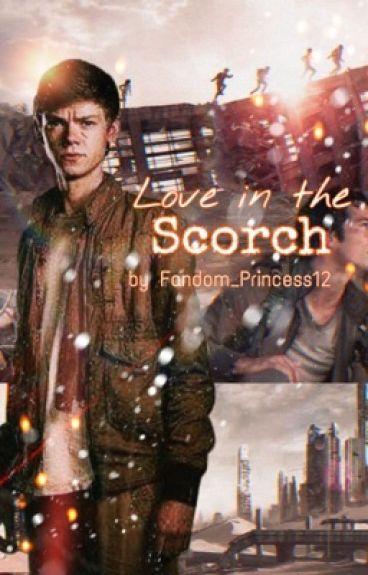 Love in the Scorch (Newt x Reader)