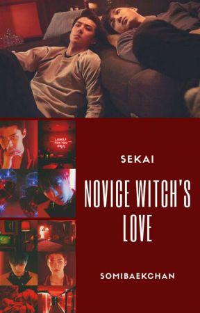 NOVICE  WITCH'S LOVE by SoMiBaekChan