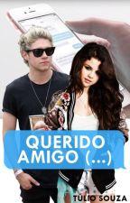 QUERIDO AMIGO, (...) | Niall Horan [MSG] by TulioSouzas