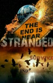 Stranded: The Mission To Survive The End by W31RDo